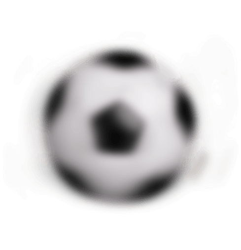 ball - SPORTS BOOK