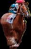 horse 2 - Home