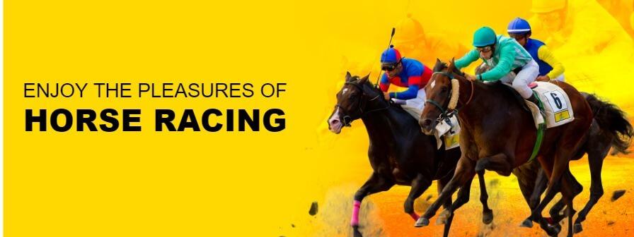 ls slider 16 slide 1 - Horse Racing